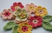 Tığ İşi Şemalı Değişik Çiçek Motiflleri