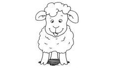 Kolay Ve Pratik Koyun Kuzu Ve Koç Nasıl Çizilir ?